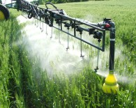 Fungicide-Application