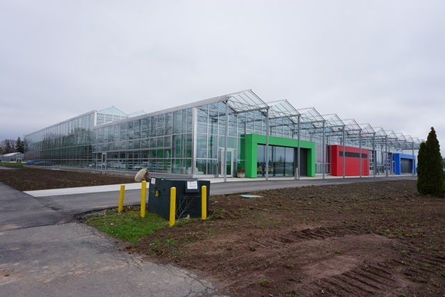 Vinelands-new-greenhouse-facility-web
