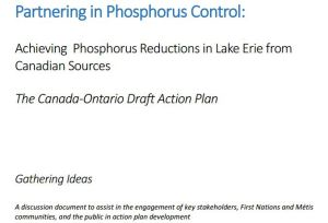 lake-erie-p-action-plan