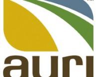 auri-logo-220x220