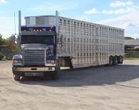 Livestock-truck-photo-courtesy-Farm-Food-Care-web