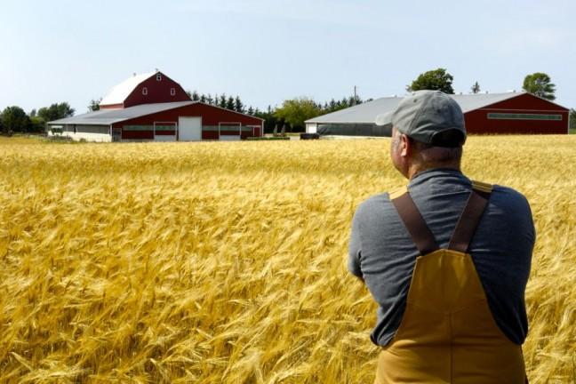 Farmer_field-iStock-RGB